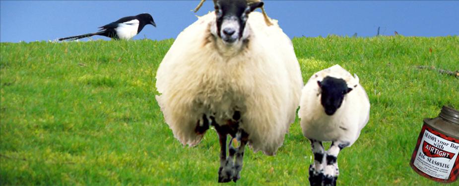 Sheepskin Bagpipe Bags